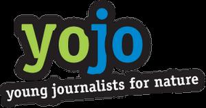 yoyo_logo